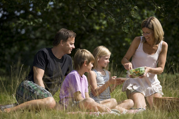 A family having a picnic