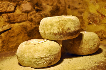Sheep Cheese in the Cellar