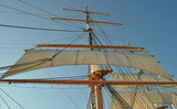 The Mast and Rigging of a Tall Sailing Ship
