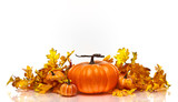 Fototapety Pumpkins and Autumn leaves on a white background