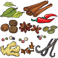 Spices icon set