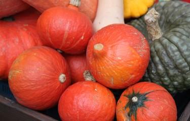 Légumes d'octobre