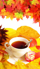 fall cup of tea