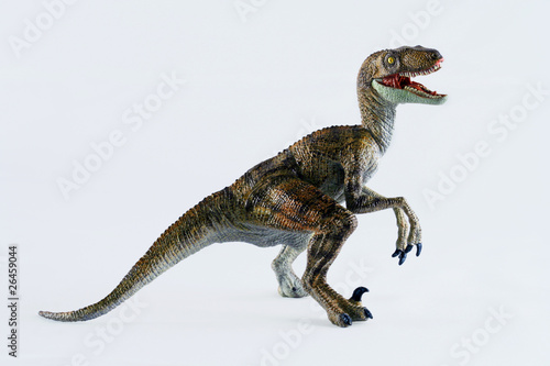 A Velociraptor Dinosaur Stands Against White