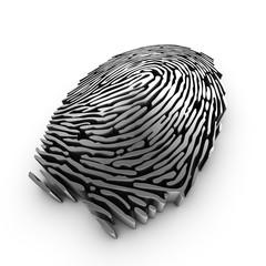 3d fingerprint representation for authentication or recognition