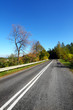 Autumn landscape - road