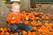 Baby boy holding pumpkin in pumpkin patch in the fall