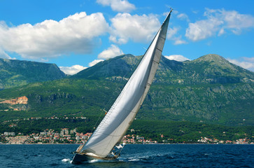 White yacht.