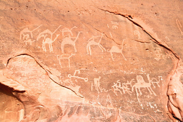 Images of  camels carved into a rock wall at Wadi Rum