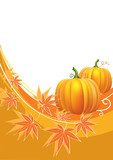Thanksgiving background with pumpkins.Vector postcard.
