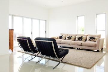 Modern Luxurious Living Room