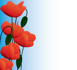 Banner of the dismissed poppies