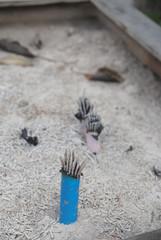 Incense Outside Tokyo Temple