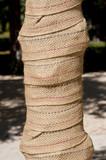 Protector de troncos poster