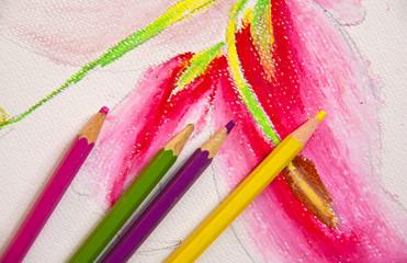 to Paint  colour