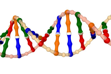 DNA (isolated on a white background)