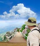 tramp looking into scenic park wooden bridge poster
