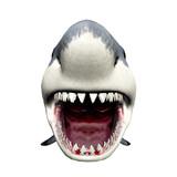 Fototapety Shark Attack