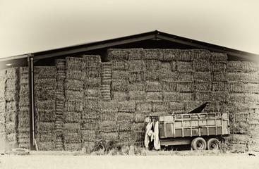 Antique Style Farm Image