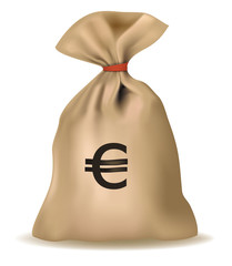 Money bag with euro. Vector.