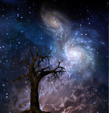 High Resolution Tree and Galaxies poster