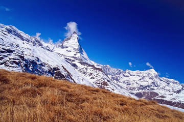 Matterhorn peak with dry meadow Switzerland, Side Perspective