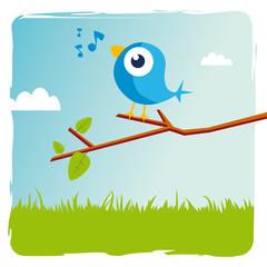 oiseau bleu twitter sur une branche