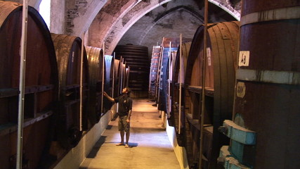 Wine grower checking his barrels of red wine