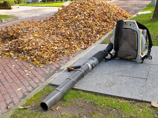 Leaf Blower beside pile of Autumn leaves