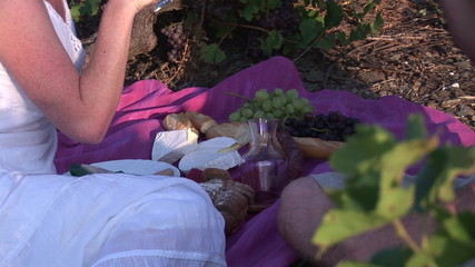 Close up of a couple picnicking in a vineyard