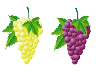 grapes white and red