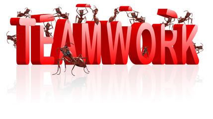 teamwork collaboration or cooperation team work