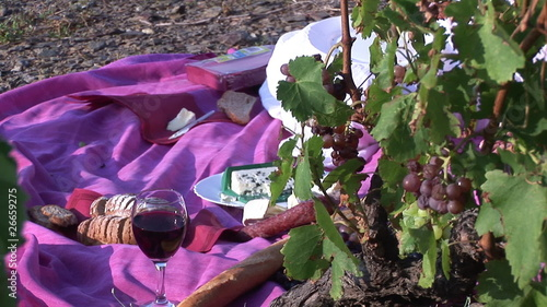 Close up of a picnic in a wineyard