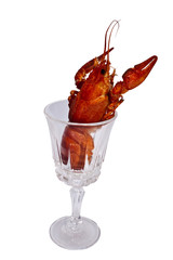 crab and cup