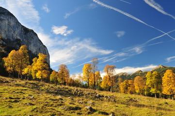 """""""Herbsttag am großen Ahronboden"""""""