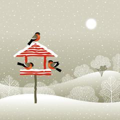 Birdfeeder in winter forest