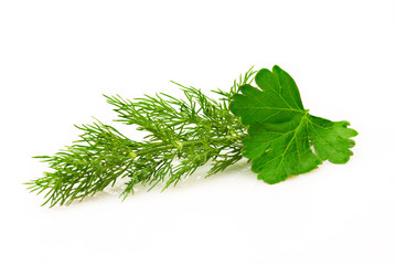 Parsley and dill isolated over white
