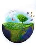 terra verde 2