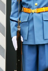 honor guard - Prague Castle