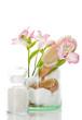 Badesalz mit Bürsten und Blume