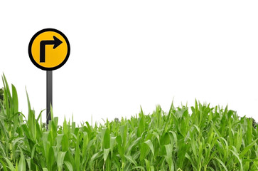 Grass and traffic logo as white isolate background