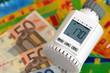 Heizungsregler mit Geld und Wärmebild I