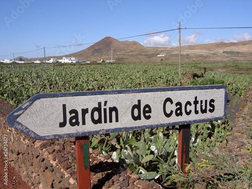 Jardin de cactus bei guatiza auf lanzarote by karsten for Jardin de cactus lanzarote