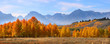 Panoramic View Of Grand Tetons...
