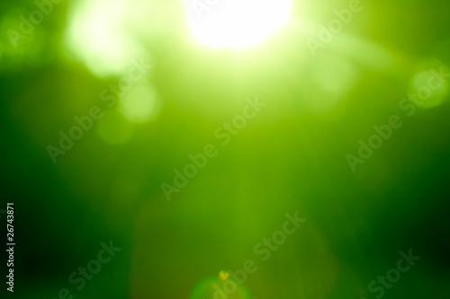 Leinwanddruck Bild Abstract green forest defocused with sunbeam