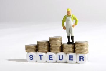 Symbolfoto - Steuer