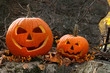 Halloween pumpkins on rocks in forest