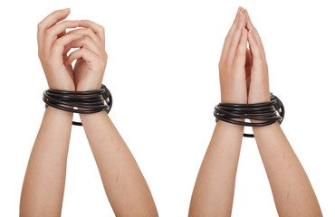 tied hands on the white background