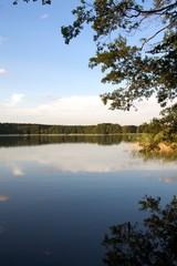 Naturlandschaft See im Ruppiner Land Brandenburg
