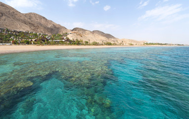 Coral Reef in Eilat